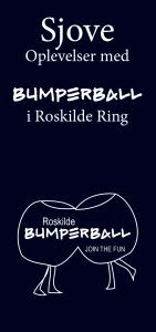 Flyers-Bumperball-web-15.05